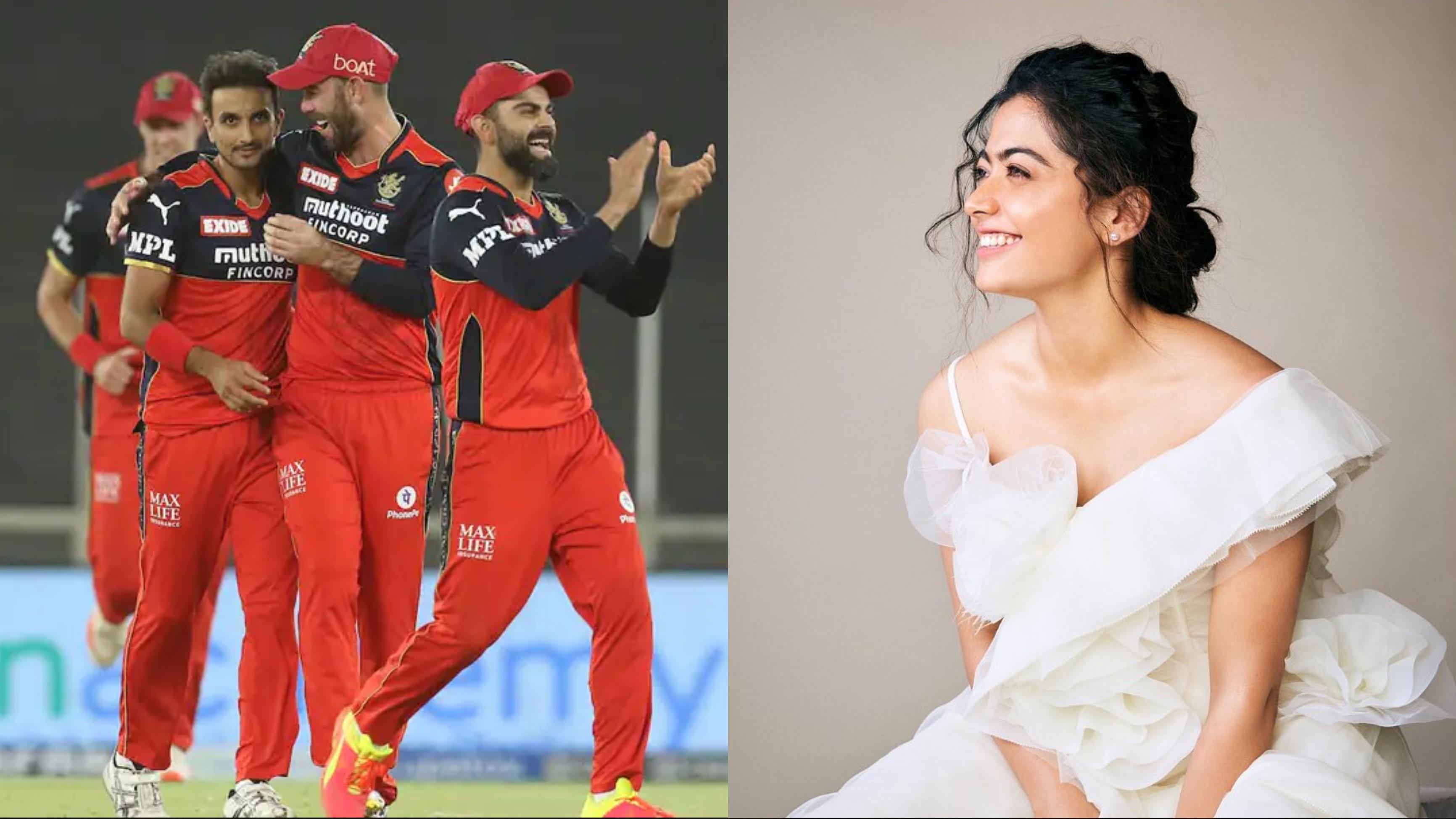 Rashmika Mandanna names Royal Challengers Bangalore as her favorite IPL team